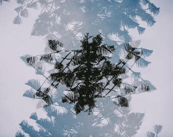Multiple Exposure II