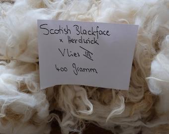 Fleece 3, raw wool by the Scotish blackface x Hedwick