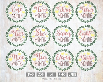 Baby Months 1-12 Wreath Svg Bundle - Cut File/Vector, Silhouette, Cricut, DXF, Clip Art, Download, Baby Age, Birthday, Leaf, Girl, Milestone