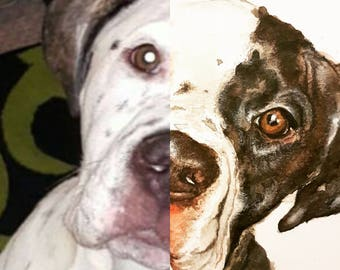 Custom pet portrait / custom dog watercolour portrait/ watercolour from photograph/ made to order / dog / pet art / original pet painting