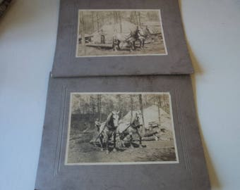 Vintage Early 1900 Matte Photographs