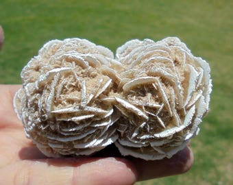 """Desert Sand Rose Selenite Gypsum Mineral Specimen 2 3/4"""" (3815)"""