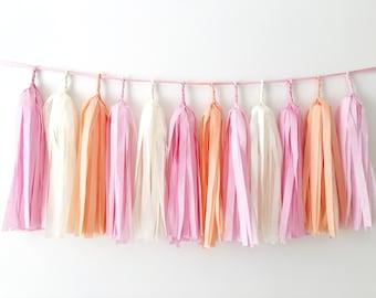 Peach Pink Tassel Garland Peach Baby Shower Tassel Banner Peach Nursery Room Decor Peach Wedding Peach Bridal Shower Peach Birthday Bunting