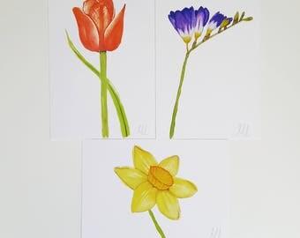 Flower prints, postcards - daffodil, tulip, freesia set of wildflowers