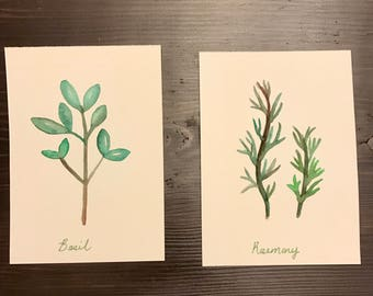 Set of two herb watercolor paintings - original