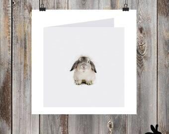 "Watercolour Cards - ""Big Bunny"" Grey Dwarf Rabbit"