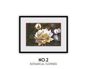 """Botanical Flowers No2, """"Botanical Flower Series"""" Watercolor Print (Limited Edition/Signed&Numbered)"""
