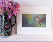 Bird, Song Thrush print from oil painting. Giclée print, museum quality and hand signed by artist - can be personalised!