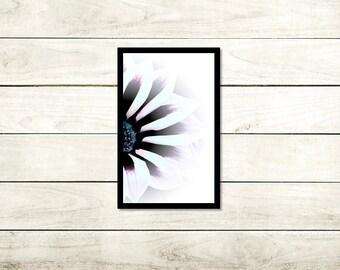 Wonderful, Floral Photography, A3 Unframed High Gloss 140gsm, wall art, Unframed photo, A3 (29.7cm x 42cm), Flower print, Modern Art