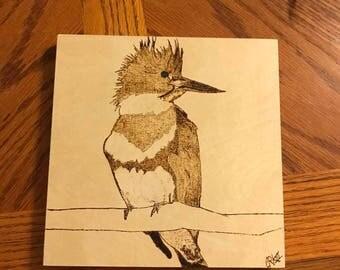 Belted Kingfisher Woodburning