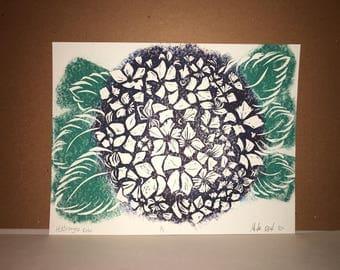 Hydrangea Color