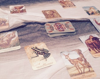 The Path Of The Heart- Tarot Spread