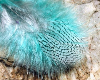 Custom feather extensions