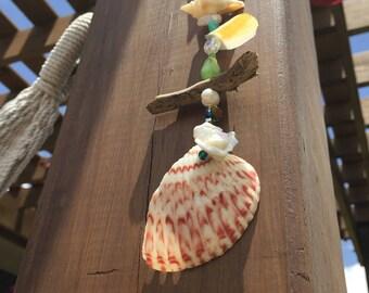 Beach Rose Sea-Catcher