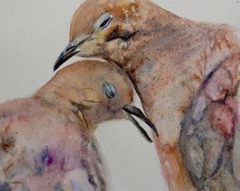 2 pigeons, tenderness