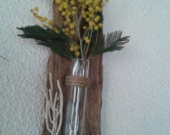 Driftwood and fossil algae vase
