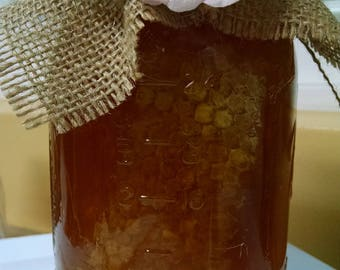 Tennessee Chunk Comb Raw Honey 3lbs