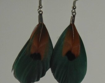 Dark green and Brown Feather Earrings