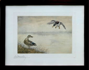 Leon Danchin (1887-1938): original signed etching-ducks on the shore