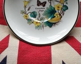 Florabunda Prinknash Pottery Plate