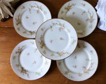 5 assiettes à dessert en porcelaine par Théodore Haviland, Limoges / vaisselle antique, 1910's / Fleurs et dorure