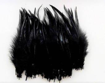 set of 10 feathers Black 10-15cm