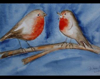 Robin bird, nature, Garden, watercolor, animal art