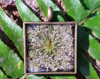 Real Queen Anne's lace pendant