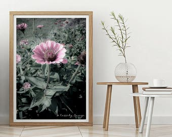 Soft Pink Florals; photography art wall decor; instant download prints