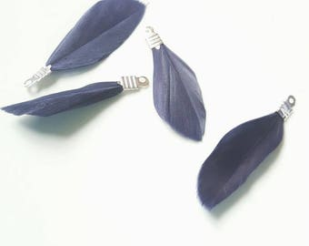 2 dark blue with silver feathers