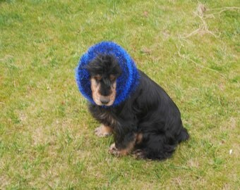 Snood or winter blue and black fancy dog ear protectors