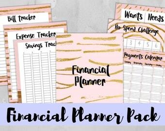 Financial Planner, Printable Financial Planner Insert, Letter , Full Sheet, PDF Download, Budget Planner, Finance Planner, Savings Planner
