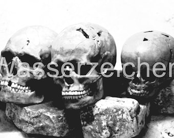 Deadly atmosphere with skulls