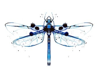 Dragonfly, print from original Ink illustration