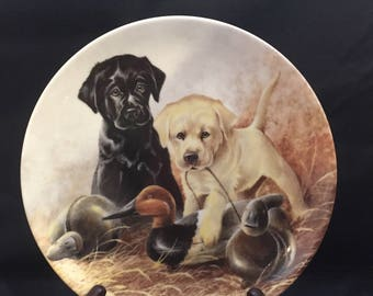 A Perfect Set - Labrador Retrievers by Lynn Kaatz from the Field Puppies series