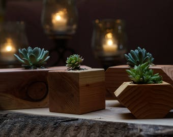 Handcrafted  succulent candle boxes
