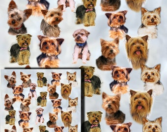 Yorkshire Terrier, Yorkie Dog Gift Wrapping Paper with matching Gift Card.