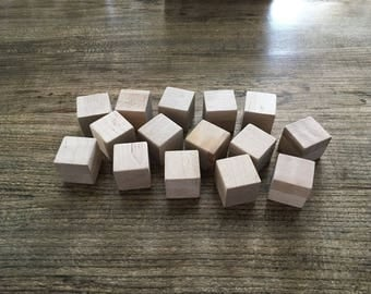 Building Blocks- Set of 25