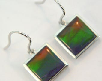 Pair of Natural Three Color Square  Shaped Canadian AAA Ammolite earrings set in Sterling Silver.