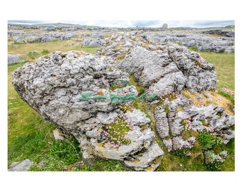 Rocks of The Burren, Clare.