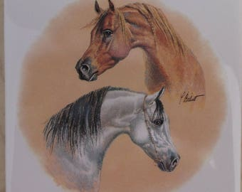 Ceramic Tile Brown & White Horses #2