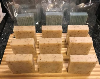 Eucalyptus Aloe Bar Soap