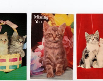 Lot of 3 Ridiculously Adorable Cat Postcards | Unused Kittens in Basket, Pets, Kitten | Paper Ephemera | Scrapbooking, Altered Art, Collage