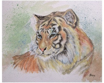 bengal tiger, india, jungle annimals, wild animals, original, watercolours, pencils, tigers