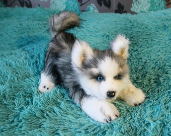 Teddy Toy  husky puppy