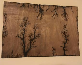 Lichtenberg Figures Wood Art