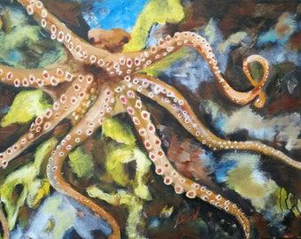 Octopus - Octa (orig. Hobotnica - Hoba)