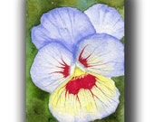 ACEO watercolor PANSY close up original painting SFA miniature  dollhouse mini