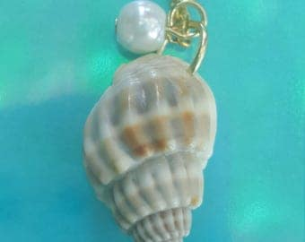 Shell summer beach necklace