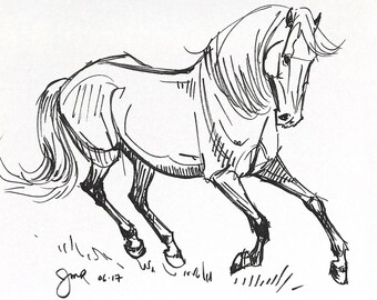 "Horse art original ""Cantering in the grass"" pen & ink sketch drawing"